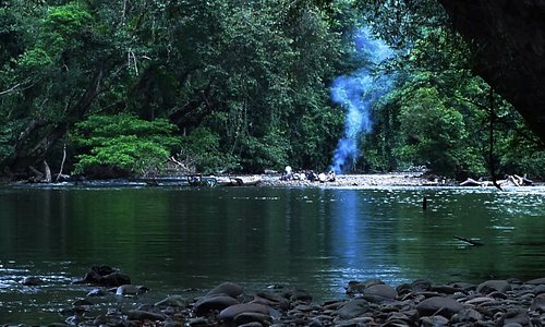 Jungle picnic experience in Sarawak