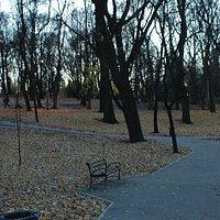 Park miejski Bytom, jesień 2015