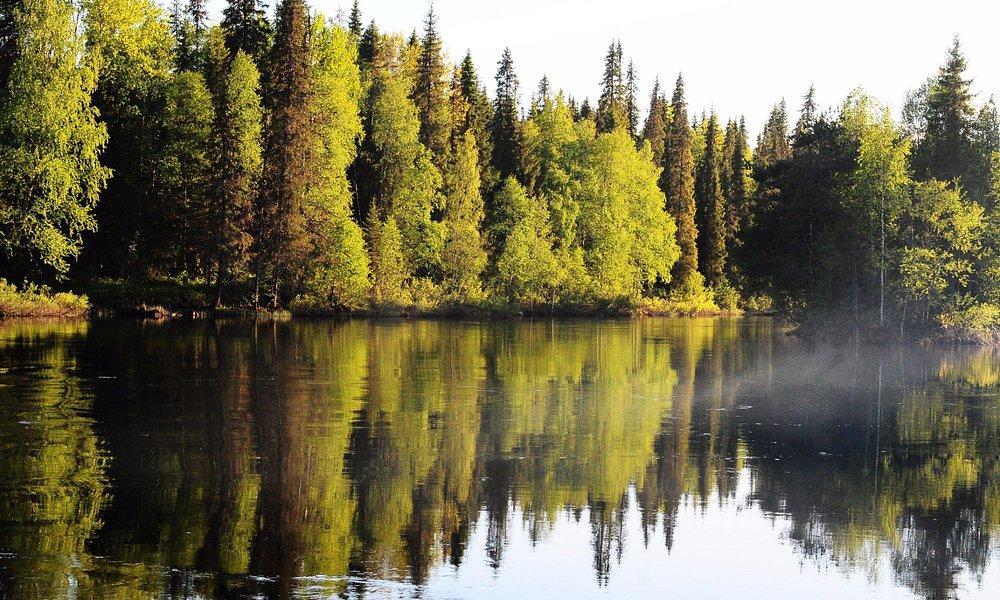 """Река Оланга, рядом прекрасный домик """"Теремок"""""""