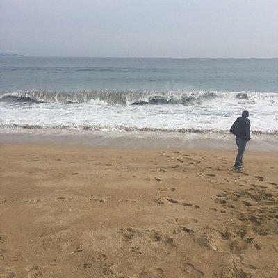 Que hermosa playa