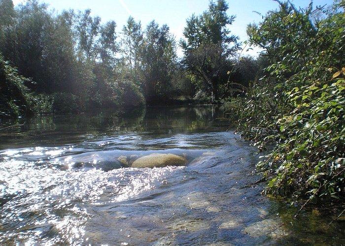 Un immagine del fiume Brenta a due passi dal parco