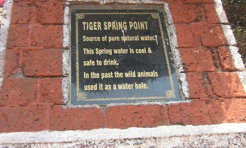 Tiger Spring Point