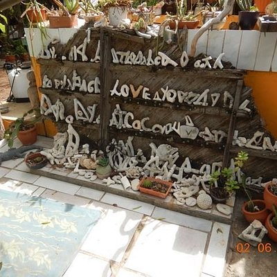 Corral alphabet display -- all picked up from inland areas