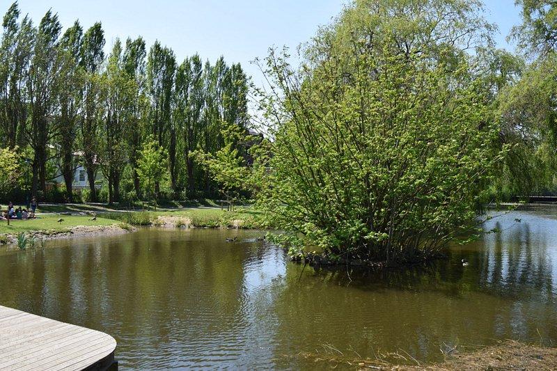 Vijver en ponton in het Koning Boudewijnpark fase II, Jette