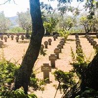 Vista panorámica de las cruces de las tumbas.