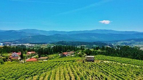 Vista panorâmica - panoramic views