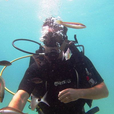 Nice first dive :-)