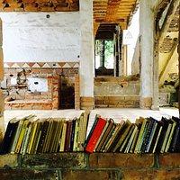Libros alrededor de toda la casa del parque.