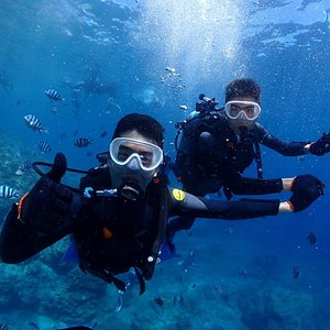 The instructor was patient and caring in teaching us diving skills and taking photos.