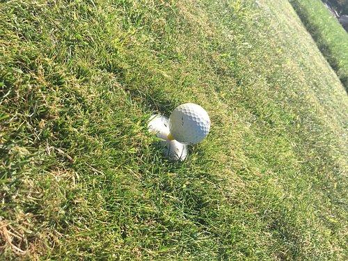 Jolie paysage au pays du mini golf version Green
