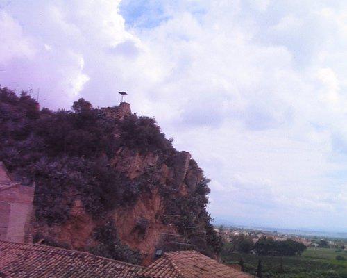 nido de cigueñas