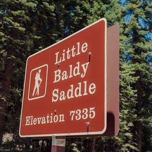 Marker across from the trailhead to Little Baldy Trail in Sequoia National Park