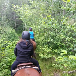 On a trail ride at Tiger Lily Farm.