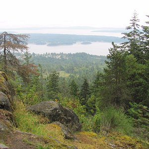 Ladysmith from the viewpoint on Heart Lake trail
