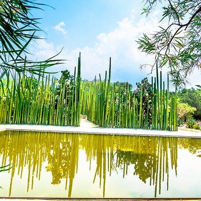 Ethnobotanical Garden