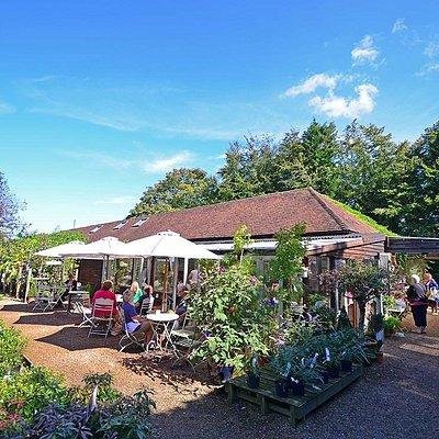 Great Park Farm Cafe outside
