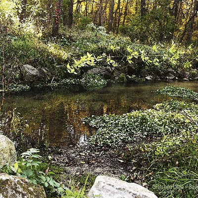Fall color reflected on the trout stream at Bailey's Ford.