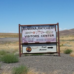 Hatchery and visitors center sign
