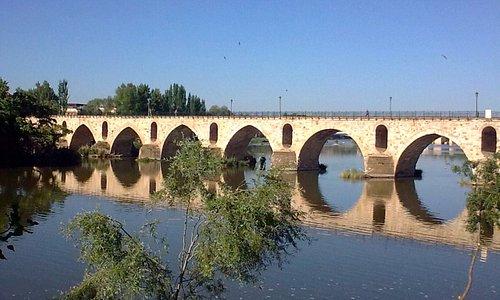 Puente de Piedra, Zamora