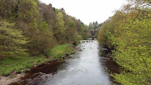 bridges over Avon