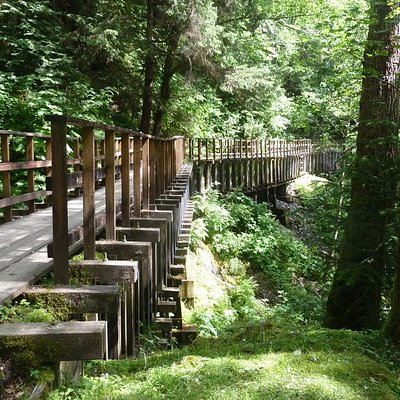 The trail is built on top of the water flume - easy and shaded.