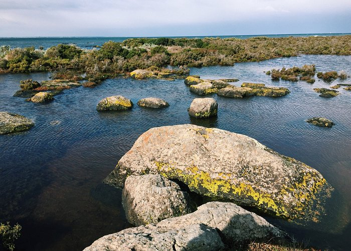 Jawbone Flora and Fauna Reserve