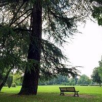 vista di uno scorcio del Parco Manin