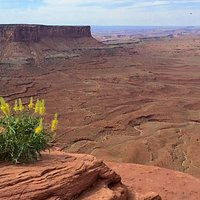 Orange Cliffs Overlook at Canyonlands National Park - Island in the Sky.