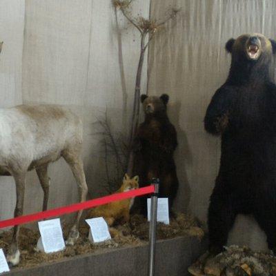 ノグリキ郷土博物館
