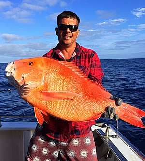 12.8kg Red Emperor - Deep-Sea Fishing Charters