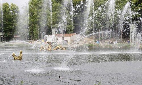 Le parc et l'eau