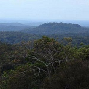 Seima Protection Forest