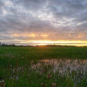 Закат в Буферном Парке.