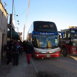Their gigantic buses