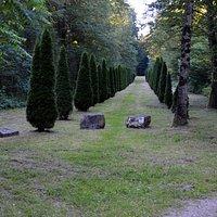 Allée menant au cimetière