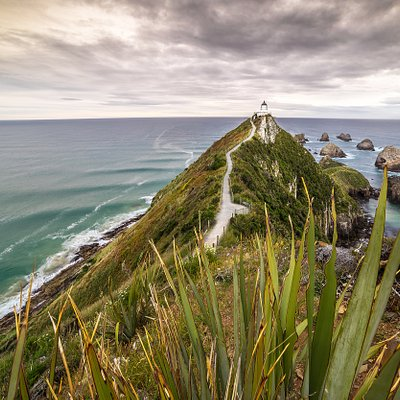 Nugget Point in the Catlins - Southern Scenic Route