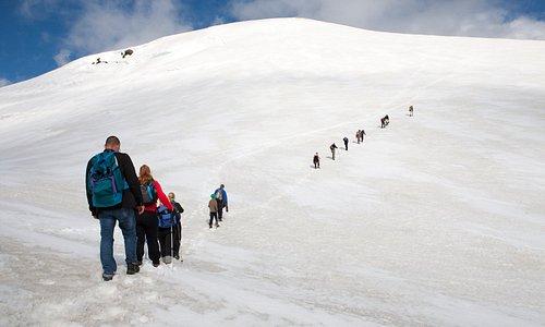 Snæfell - Day tour