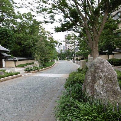 通り風景(国体通り方向)