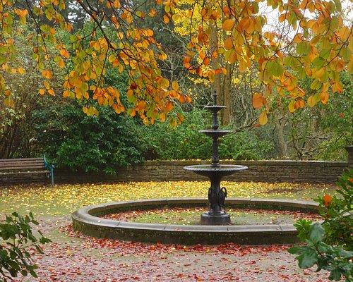 Old Fountain in Autumn