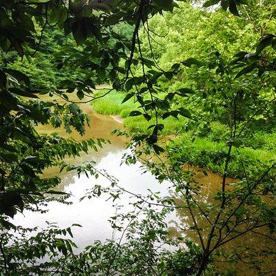 Scenic River views