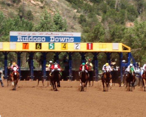 Quarter horse race, sprint 800 yards, 21 seconds