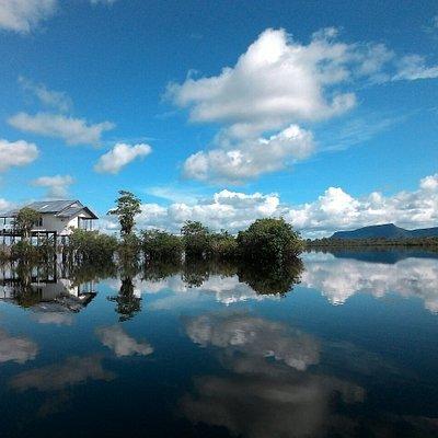Terletak di kabupaten kapuas hulu, danau sentarum sebagai cadangan air sungai kapuas disaat musi