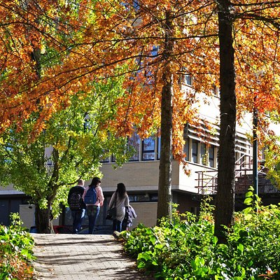 Jardim Botânico UTAD - Um mundo verde