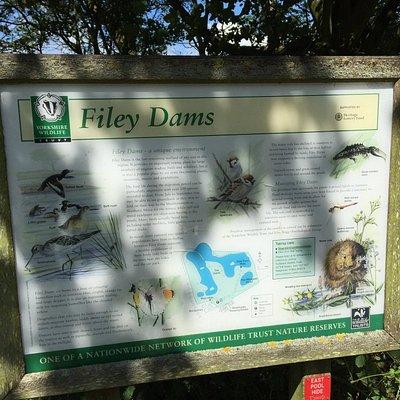 Filey Dams