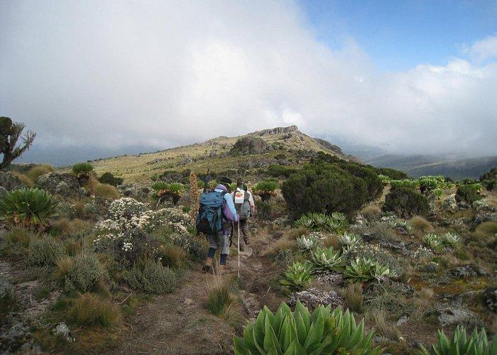 hike down Mt Kenya