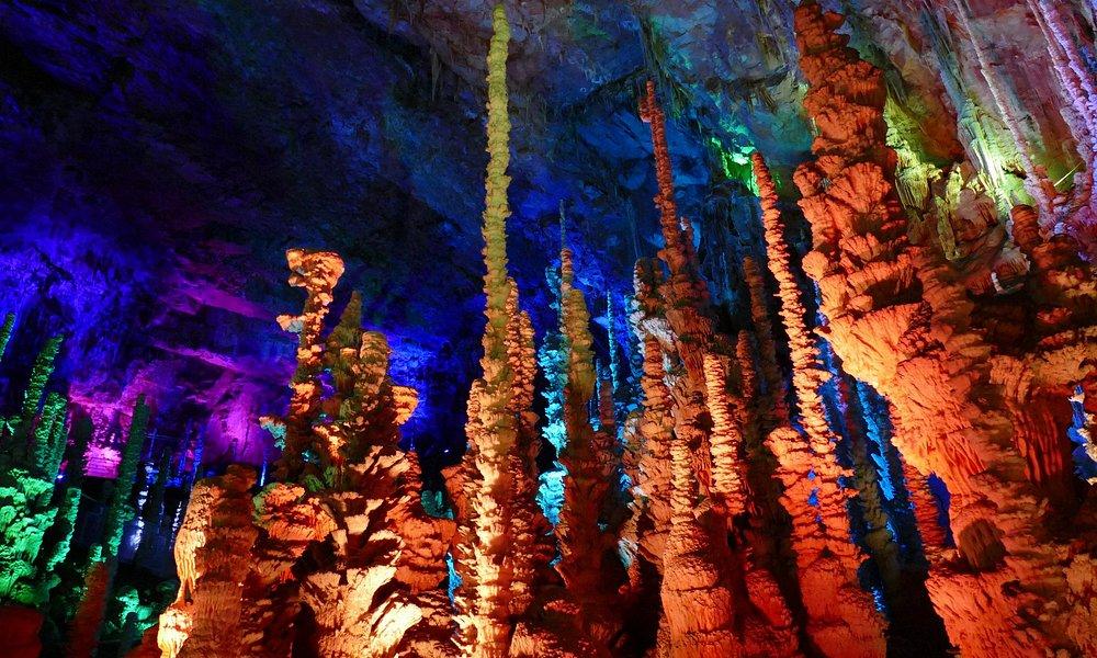 Forêt de stalagmites