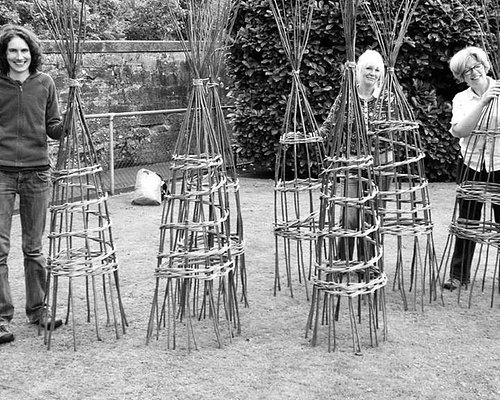 Special Branch Basket - Willow plant support day