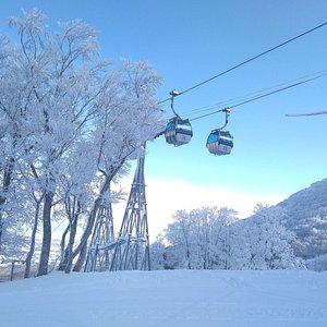 Aomori Spring Gondola takes you to over 920m above sea level