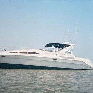 Pashmina cruiser available with Captain