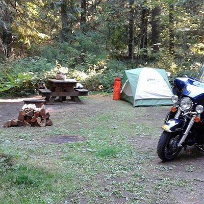 Camp site #56
